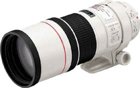 Canon EF 300mm f/4 L IS USM - 2530A021