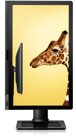 """BenQ LCD BL2201PT Black 22.0""""W/TN LED/WSXGA+/12M:1/5ms/DVI/DP/pivot/repro - 9H.L4WLA.SBE"""
